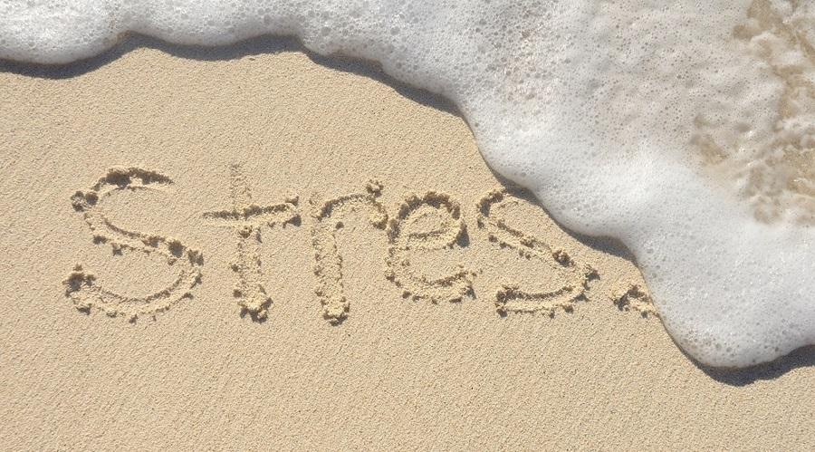 Summer Stress Special!